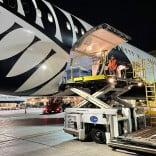Air New Zealand 787 on Tarmac