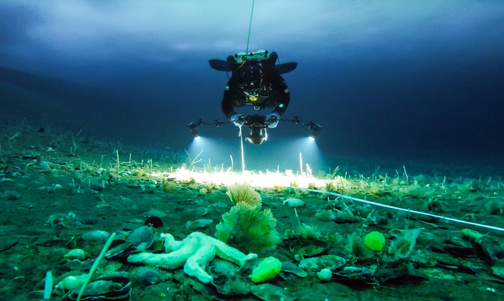 Peter Marriott videoing life on the seafloor, Antarctica.