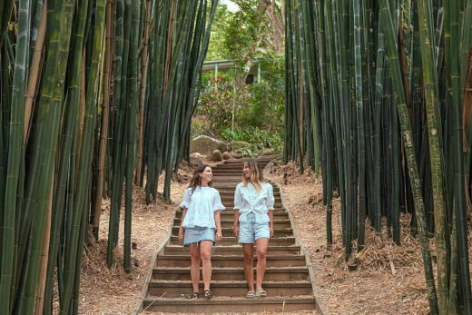 Friends walking through a bamboo path, Shambhala Gardens, Byron Bay.