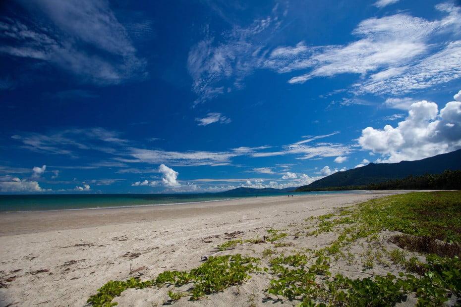 Cape Tribulation, Queensland, AU.