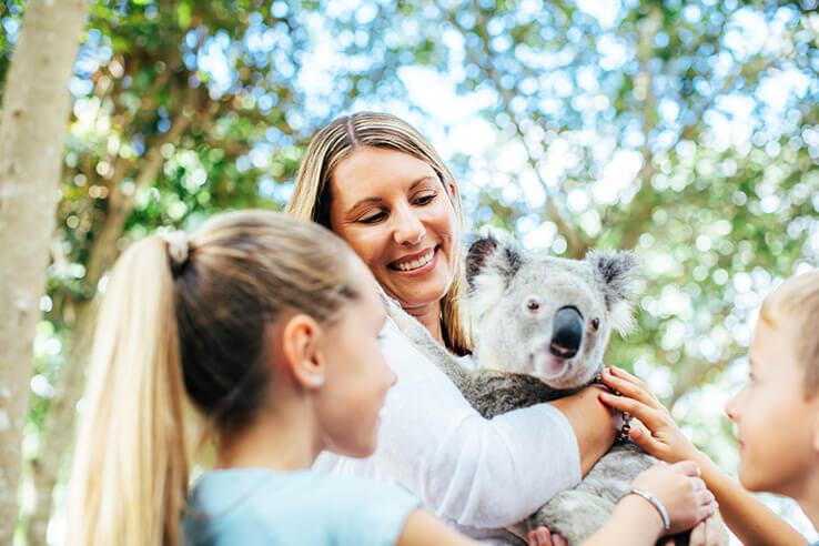 Koala hug, Dreamworld, Gold Coast, Australia.