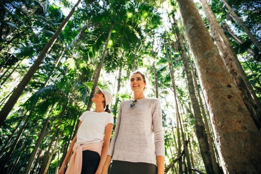 Women on walking trail, Hinterland, Gold Coast, Australia.