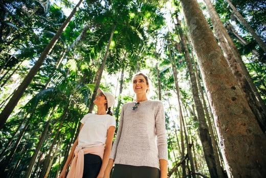 Women on walking trail, Hinterland, Gold Coast, Australia.
