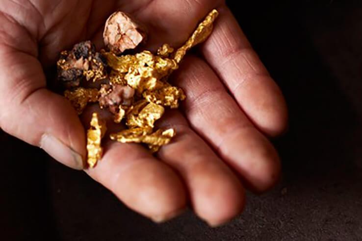 Hand holding gold nuggets, Kalgoorlie, Australia.