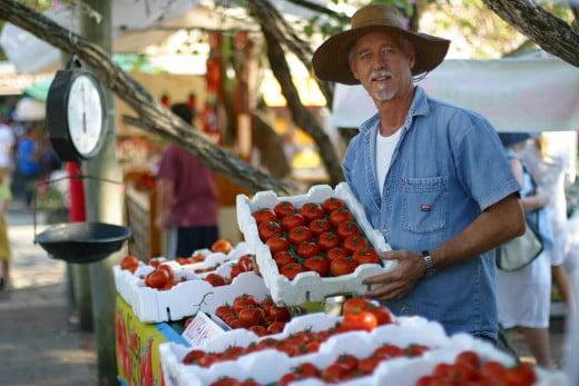Tomatoes at Eumundi Market, Sunshine Coast, Australia.