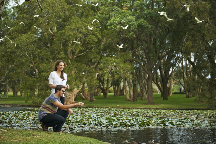 Couple at the Lily Pond, Centennial Park, Sydney, Australia.