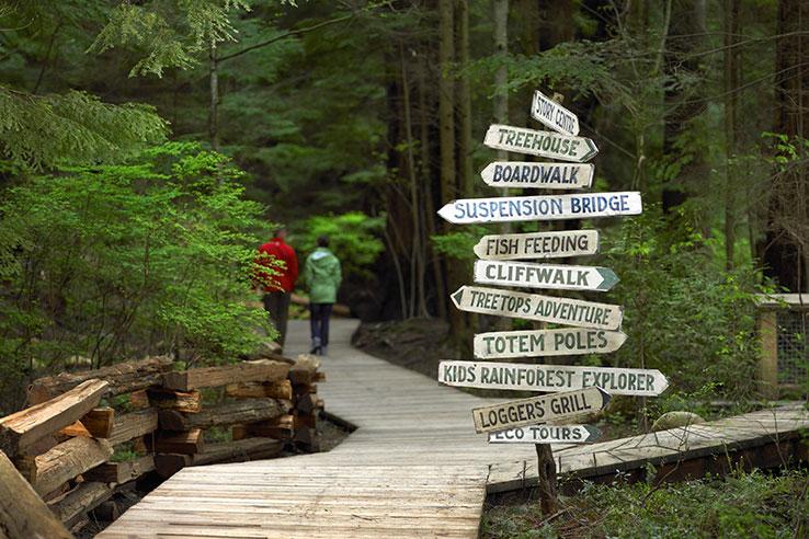 Rainforest at Capilano Suspension Bridge Park, Vancouver, Canada.