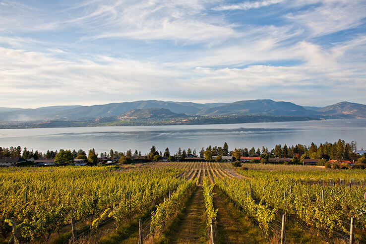Summerhill Pyramid Winery, Okanagan Valley, Vancouver, Canada.