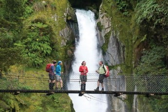 A group standing on a bridge, Milford Track, Fiordland.