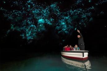 Waitomo Caves, Hamilton.
