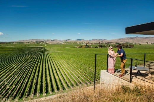 A couple enjoying views of the vineyards at Brancott Estate.