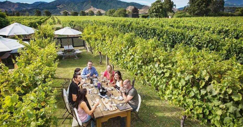 Friends enjoying lunch in the vineyards at Saint Clair Estate, Marlborough.