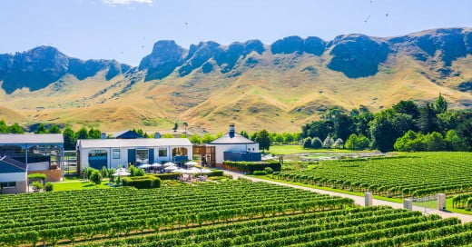 Craggy Range Winery, Napier, New Zealand.