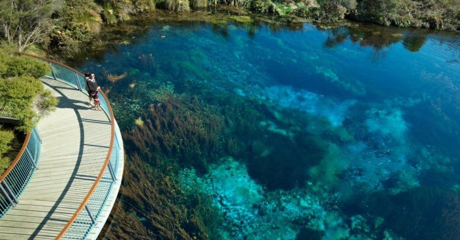 Te Waikoropupu Springs.