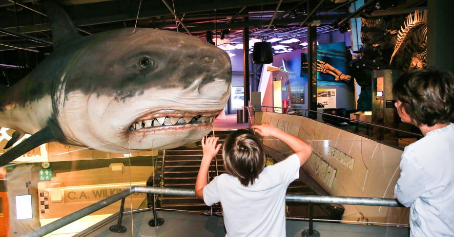 Boy and shark, Puke Ariki Museum, New Plymouth/Taranaki, New Zealand.