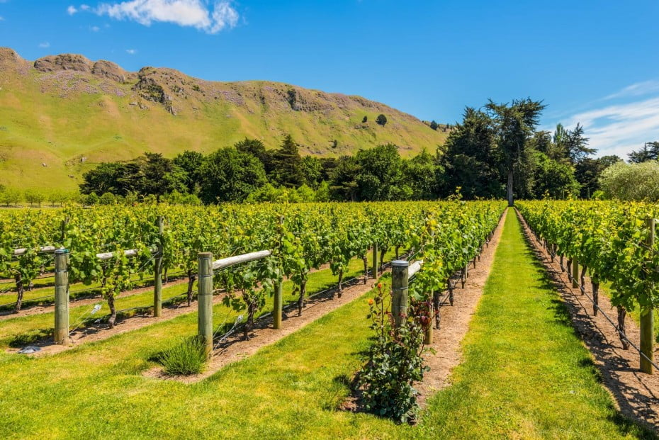Villa Maria is New Zealand's most awarded winery.
