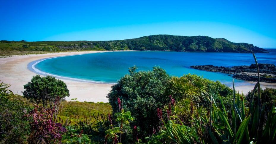 Matai Bay, Karikari Peninsula, Northland, New Zealand.