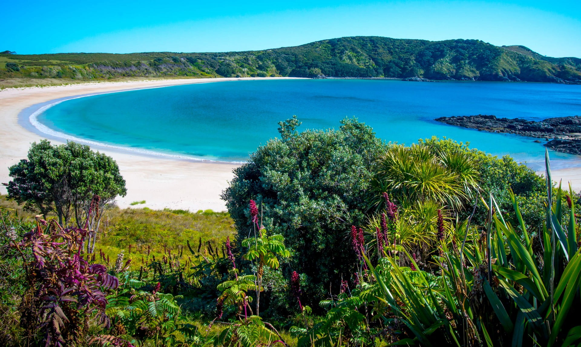 Maitai Bay, Karikari Peninsula, Northland, New Zealand.