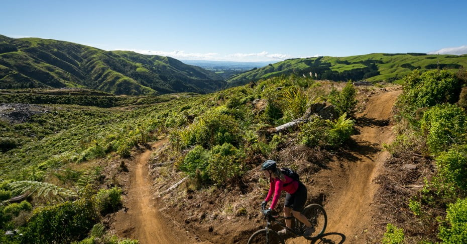 Arapuke Mountain Bike Park, Palmerston North, NZ