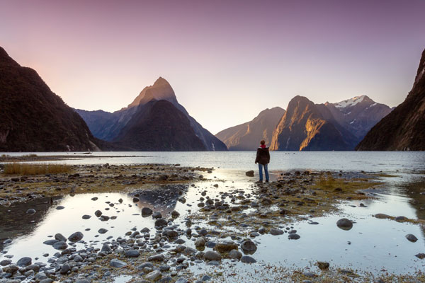 Man looking at Milford Sound, Fiordland National Park.