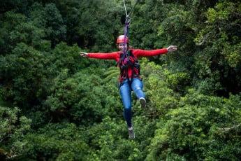 Lady on a zipline, Rotorua Canopy Tour, Rotorua.