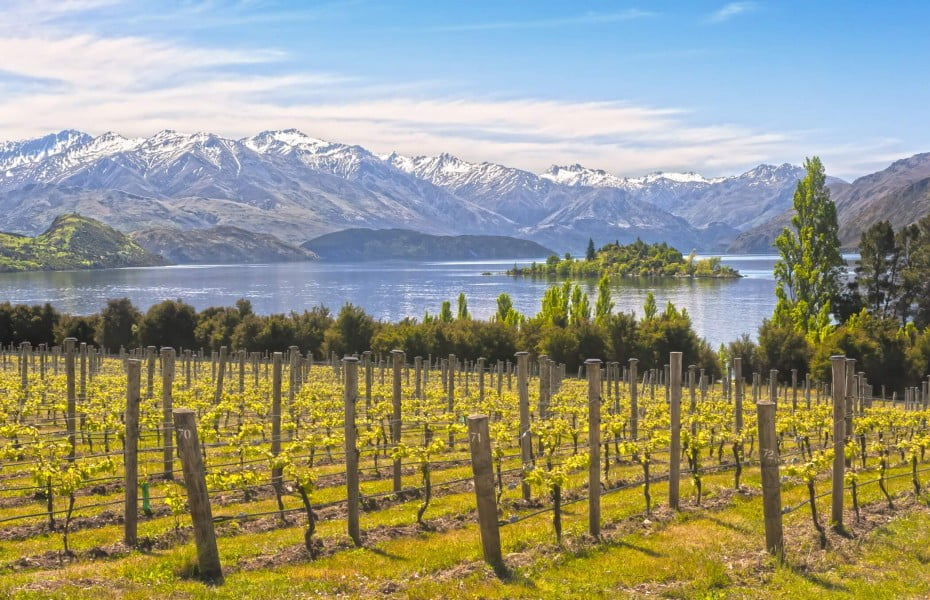 Nestled in Central Otago near Lake Wanaka, Rippon Vineyard offers an unbeatable view of land and water.