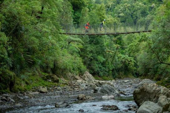 Motu Paki, Tauranga, New Zealand.