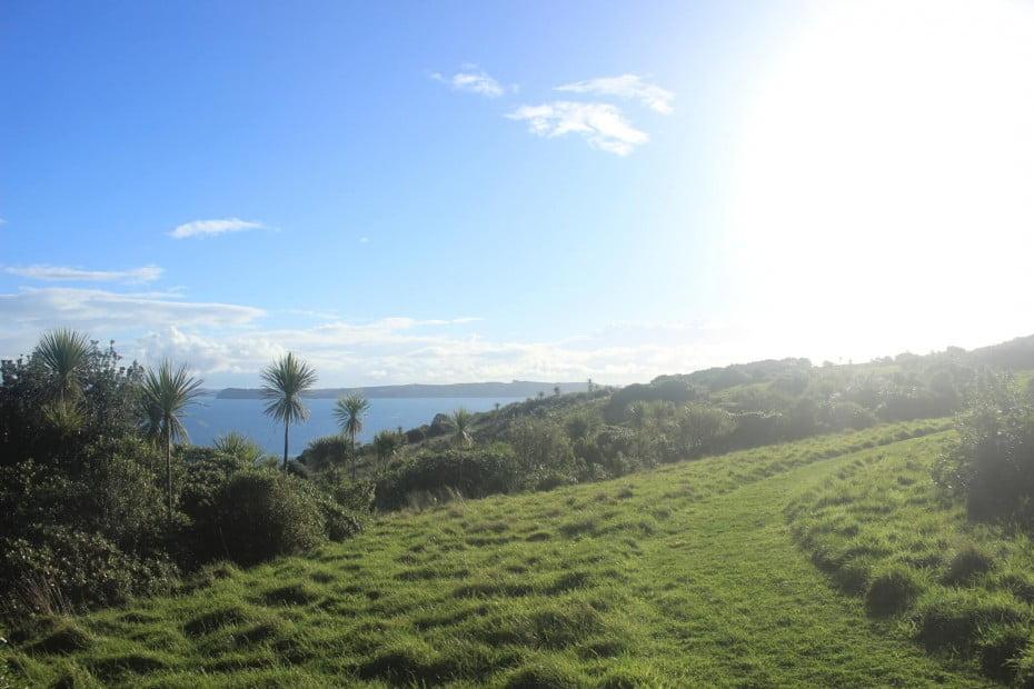 Hauraki Bay on Tiritiri Matangi Island, New Zealand.