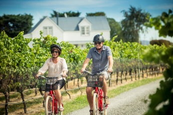 Couple cycling through the vines, Martinborough, Wairarapa, New Zealand.