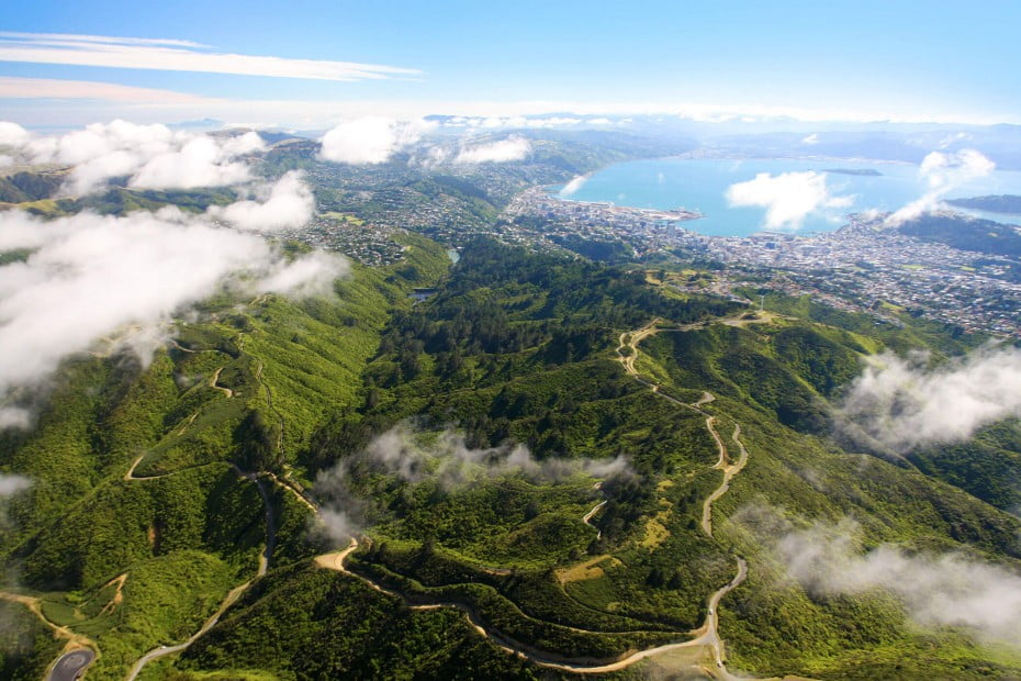 Zealandia, Wellington, New Zealand.