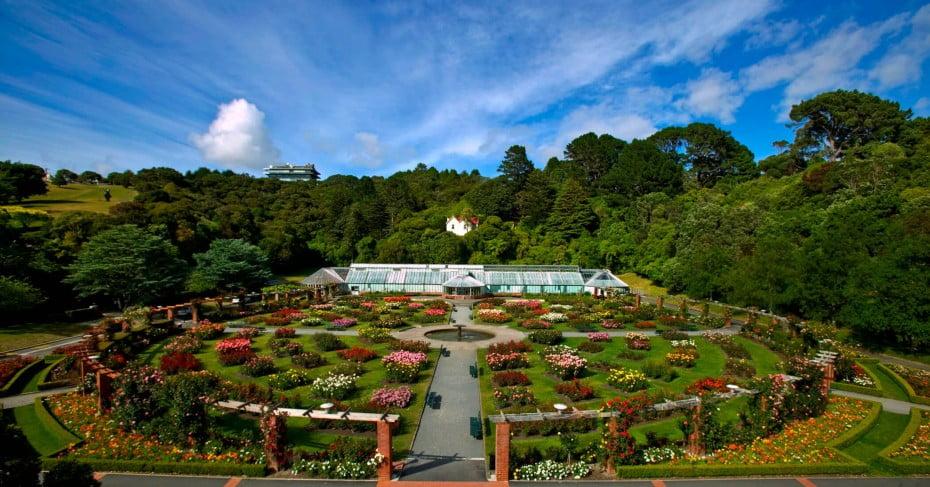 Botanic Gardens, Wellington, New Zealand.