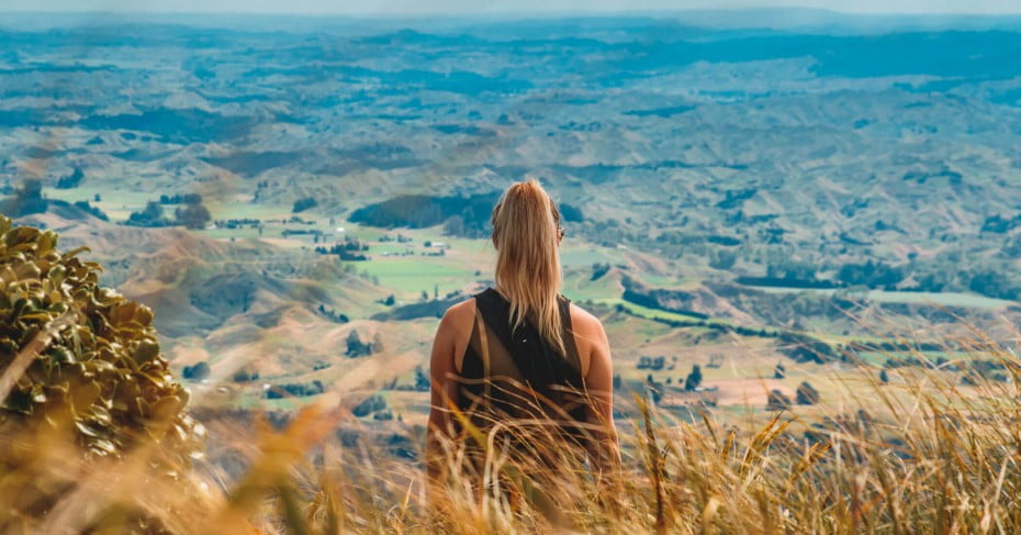 NZ Palmerston North - View from the Raniwahia Hutt track