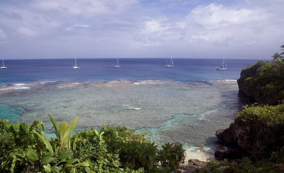 Tropical Reef, Niue.