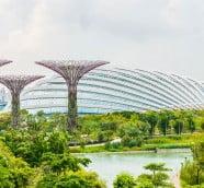 A Singapore stopover