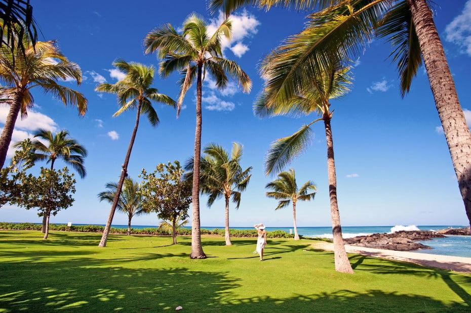 Oahu, Hawaii, USA.