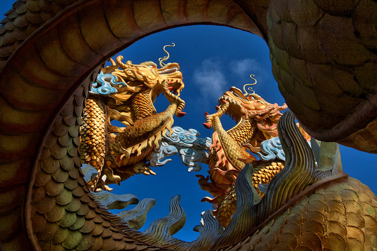 Dragons, Vietnam.