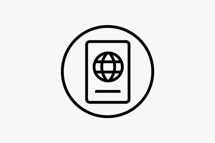 Air New Zealand international entry icon.