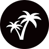 Air New Zealand palm trees icon.
