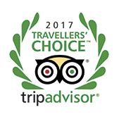 TripAdvisor Travellers' Choice Awards 2017 logo.