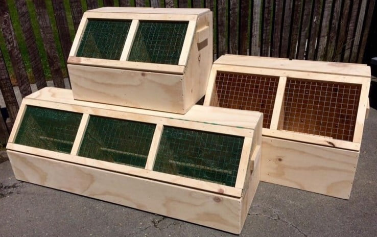 travelling-with-pets-wooden-cages.jpg