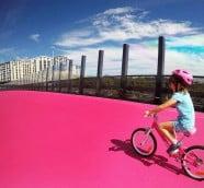 尼爾森單車道(Nelson Street Cycleway)