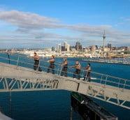 奧克蘭大橋 (Auckland Harbour Bridge)