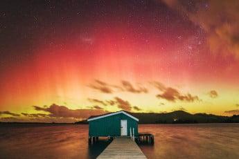 ニュージーランドで感動体験、満天の星空 - ダニーデン