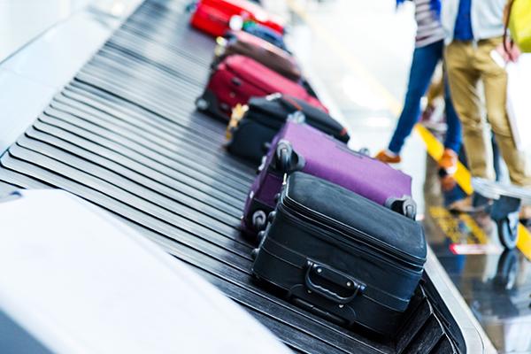 オンライン予約でできること - 前払い追加手荷物を追加する