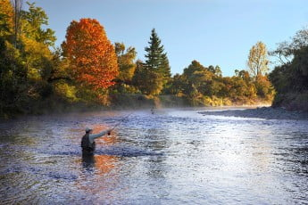 Fly-fishing, River Birches Lodge