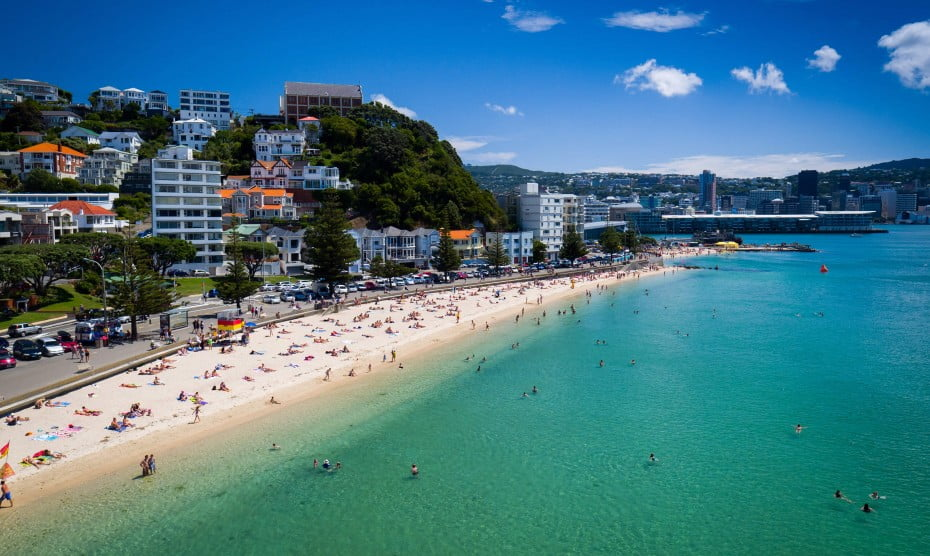 Search and Book Flights to Wellington