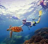 Amazing Australia experiences