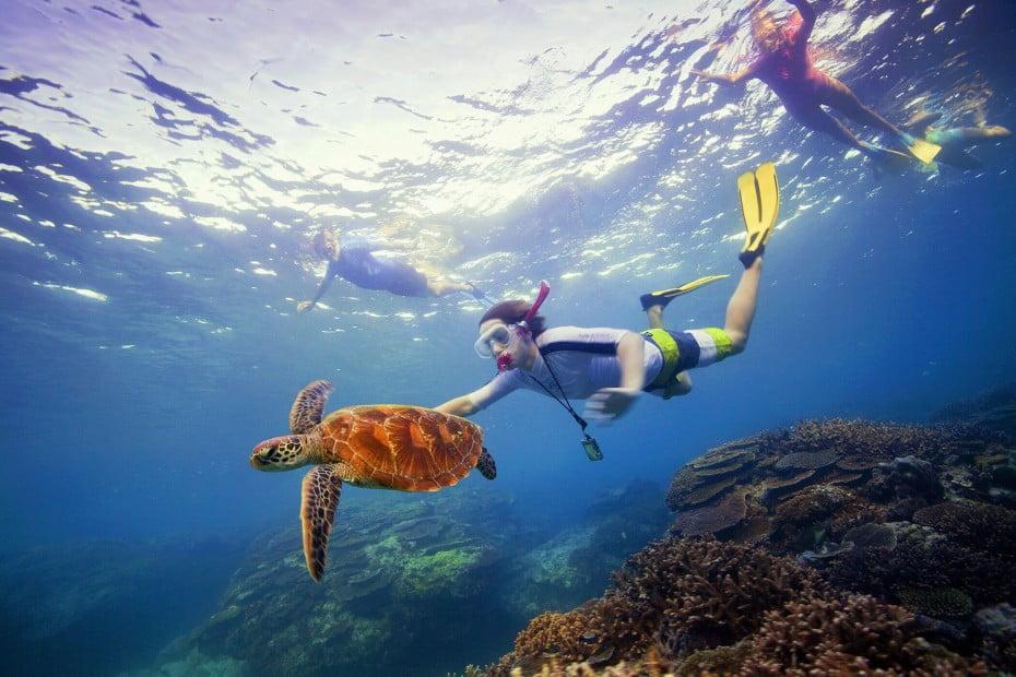 Great Barrier Reef, Queensland, AU.