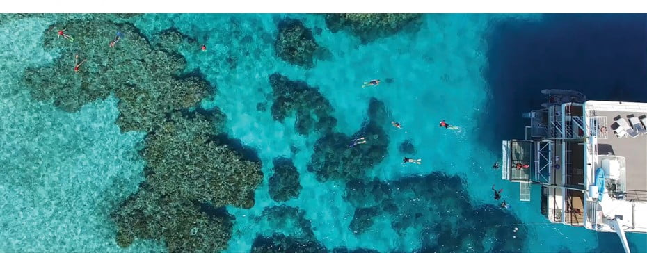 Coral Expeditions on the Great Barrier Reef, Queensland, Australia