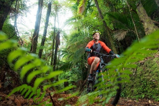 Pakihi Track, Motu Trails, Gisborne, New Zealand